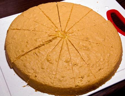tort in imagini